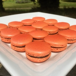 Coral Macarons with Pink Lustre